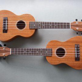 Concert Ukulele in Mahogany