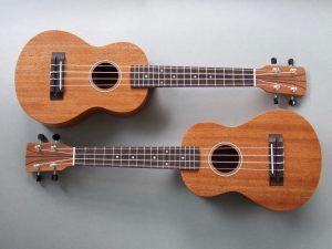 Mahogany Concert Ukulele